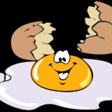 【注意!】なぜ卵かけご飯を食べてはいけないのか~生卵に潜む2つのリスク~【デメリット】